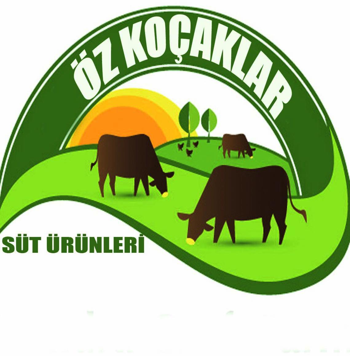 Kars Kaşar Peyniri Kars Balı ÖZKOÇAKLAR SÜT ÜRÜNLERİ
